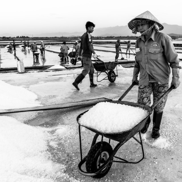"""At the salt field"" stock image"