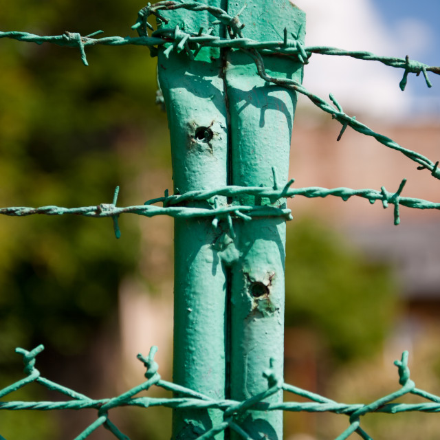 """""""Green steel barbed wire fence"""" stock image"""