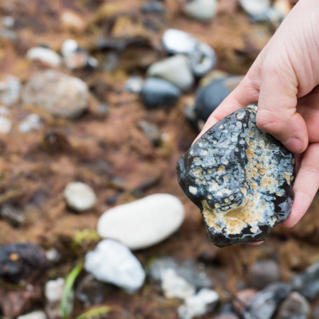 """""""Hand holding flint stone"""" stock image"""