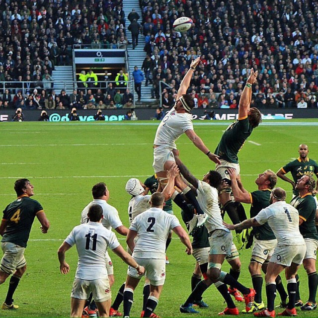 """""""Line-out"""" stock image"""
