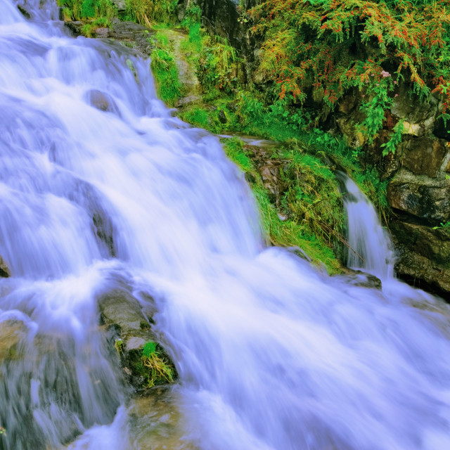 """Waterfall with Green Vegetation"" stock image"