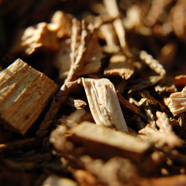 """Bark mulch 2"" stock image"