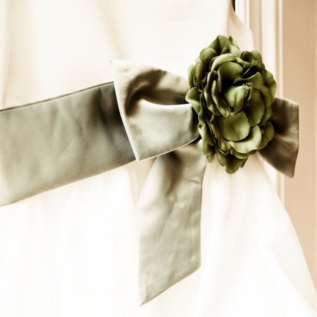 """""""Bridesmaids Dress"""" stock image"""