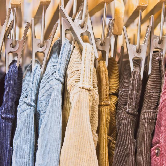 """Corduroy trousers"" stock image"