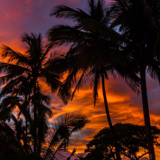 """Hawaii sunrise"" stock image"