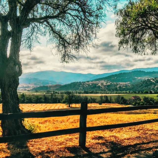 """California Countryside"" stock image"