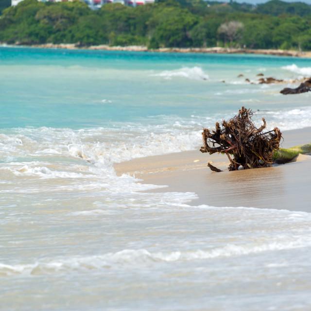"""Beach at Playa Blanca"" stock image"