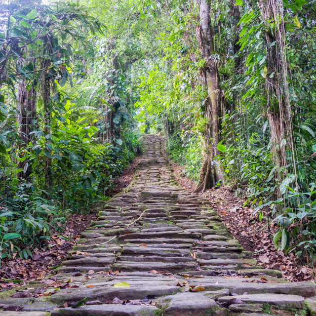 """""""Lost City Stairs"""" stock image"""