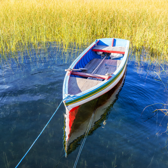 """Colorful Boat and Reeds"" stock image"