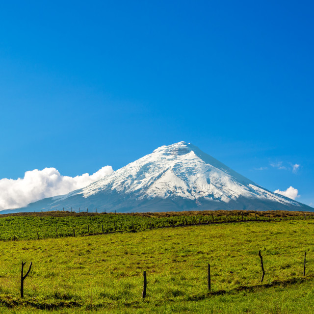 """""""Snow Capped Cotopaxi Volcano"""" stock image"""