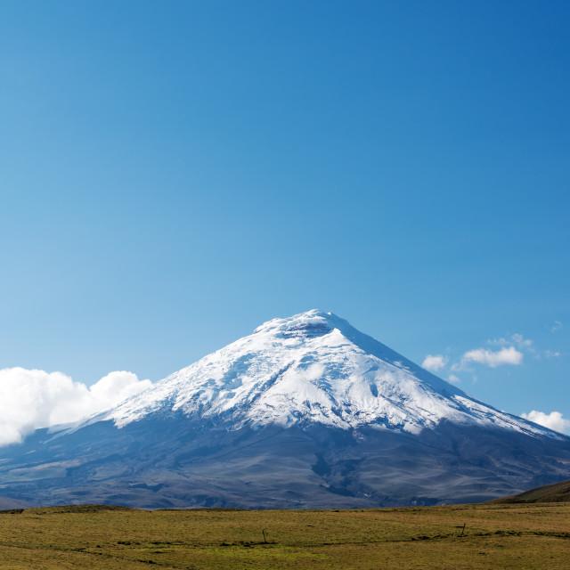 """Cotopaxi Volcano"" stock image"