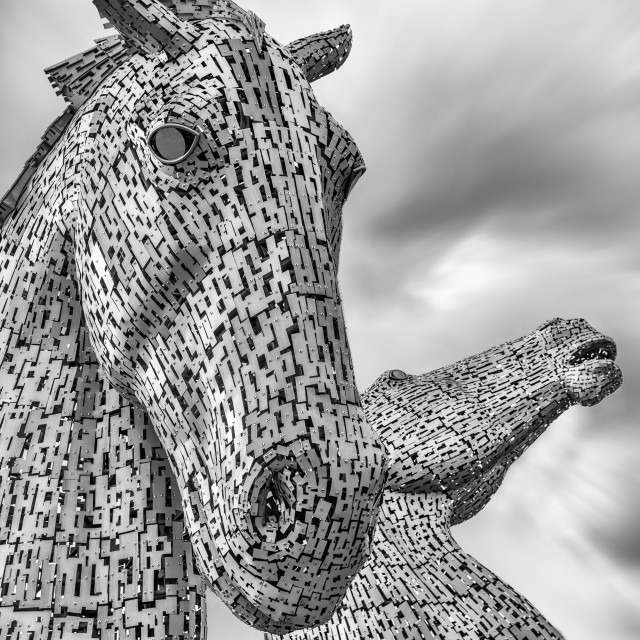"""The Kelpies Black and white"" stock image"