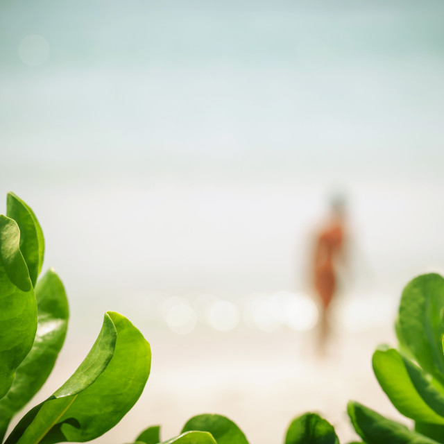 """Blurred of bikini girl at tropical beach on summer ."" stock image"