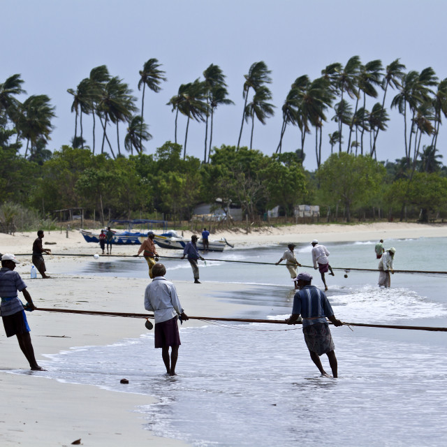 """""""Fishermen in Uppuvell beach, Sri Lanka"""" stock image"""