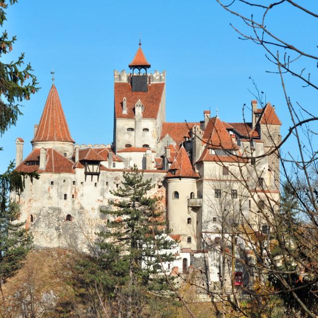 """bran castle"" stock image"