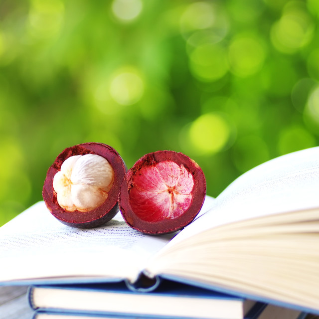 """sliced mangosteen on a book"" stock image"