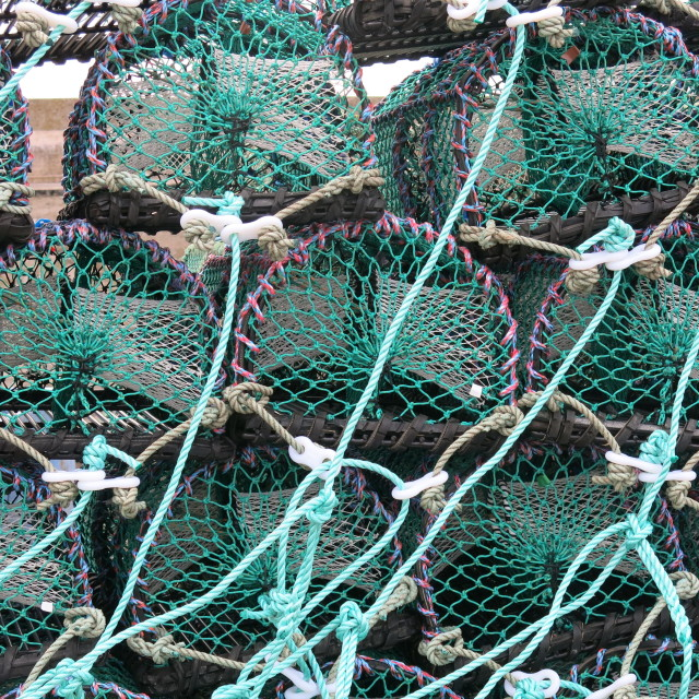 """""""A line of lobster pots?"""" stock image"""