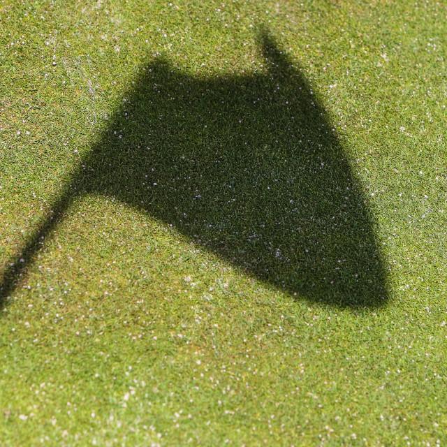 """""""Flag Shadow"""" stock image"""