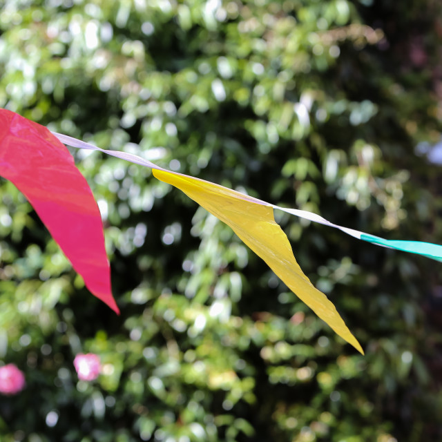 """Summer Bunting"" stock image"