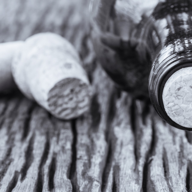 """Some very old wine bottles - in Black and White shot."" stock image"