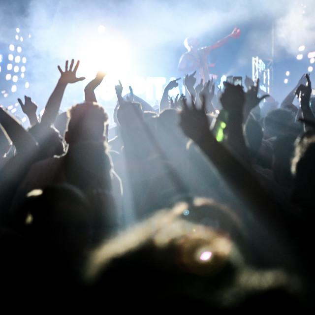"""""""Euphoric Crowd"""" stock image"""