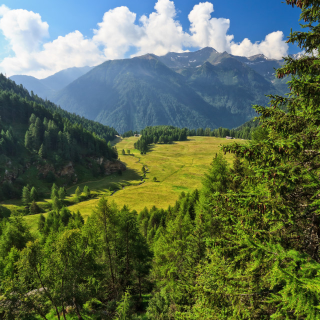 """Trentino - Pejo valley"" stock image"