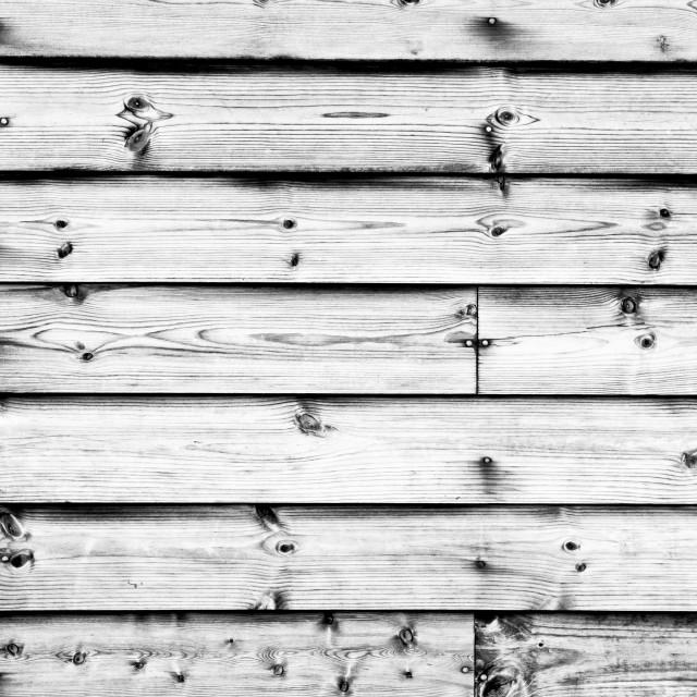 """""""Wood background"""" stock image"""