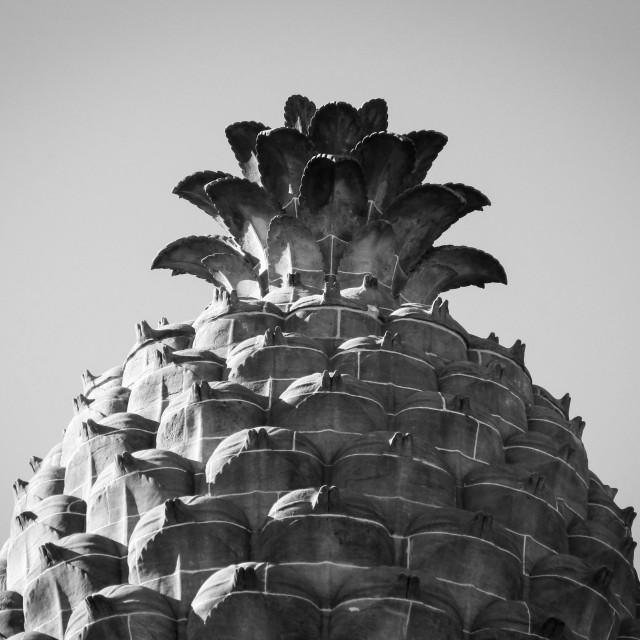 """Pineapple pavilion, Dunmore, Scotland UK"" stock image"