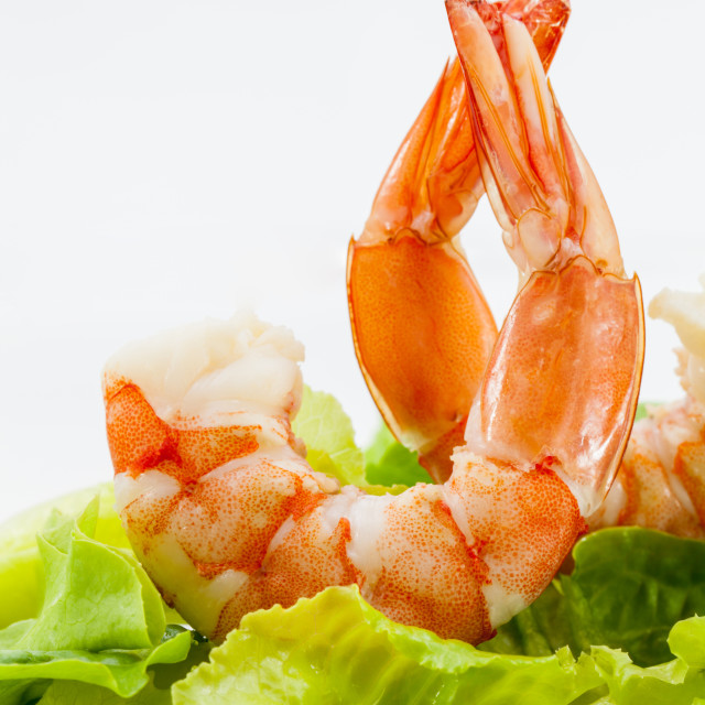 """Mixed green salad with shrimps"" stock image"