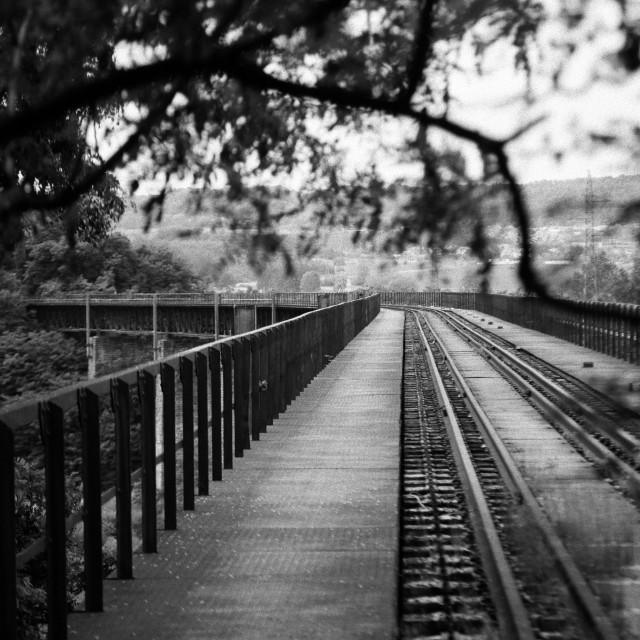 """Old Rail Bridge Top B&W"" stock image"