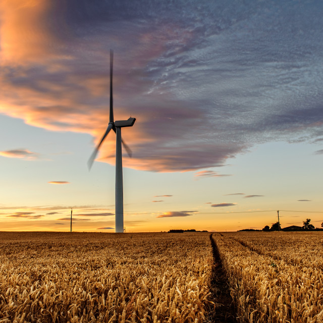 """Turbine In The Wheat"" stock image"