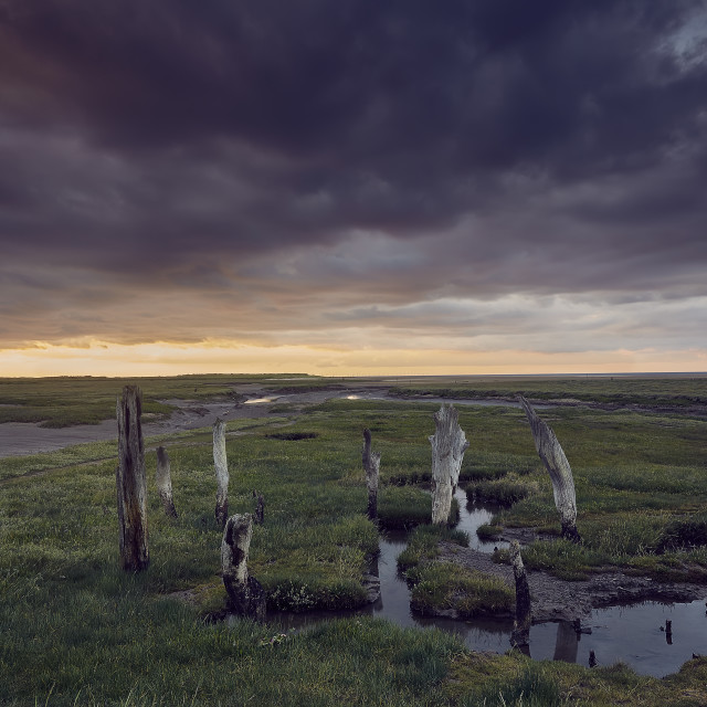 """Thornham Sea Henge"" stock image"