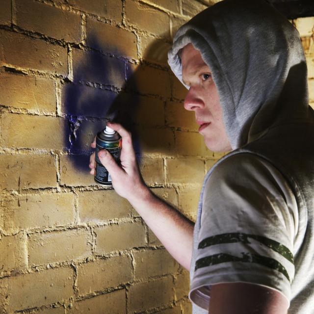 """Spraying Graffiti"" stock image"