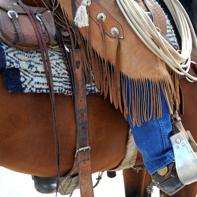 """""""Cowboy on horse."""" stock image"""