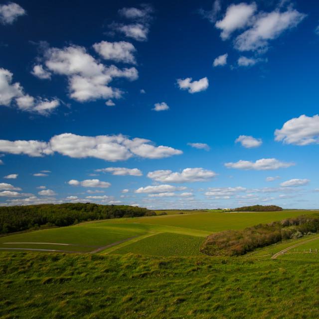 """Sunny landscape"" stock image"