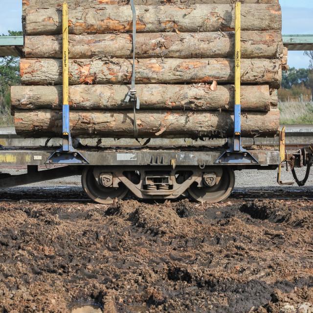 """""""log wagon"""" stock image"""