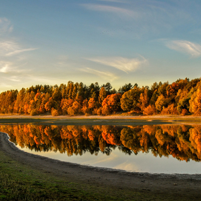 """""""The colors of Autumn"""" stock image"""