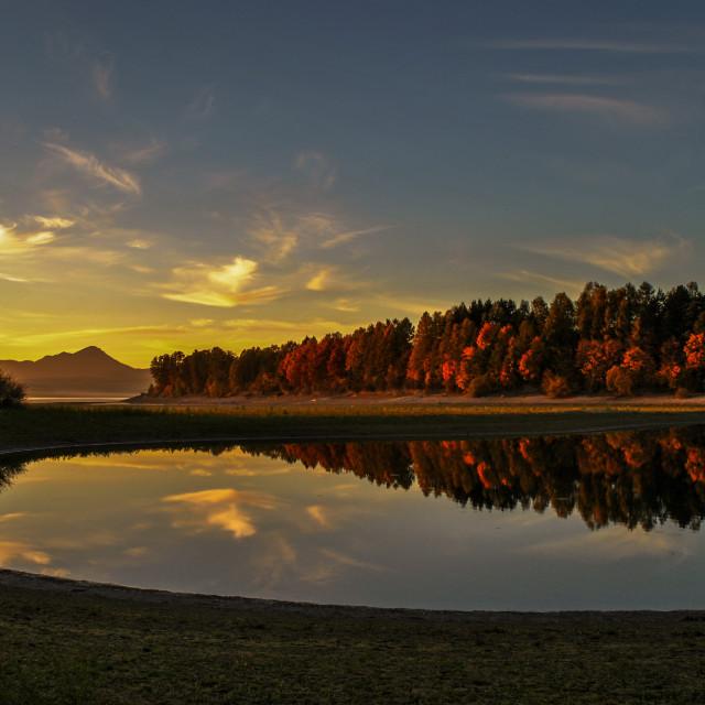 """Autumn trees on the lake 3"" stock image"