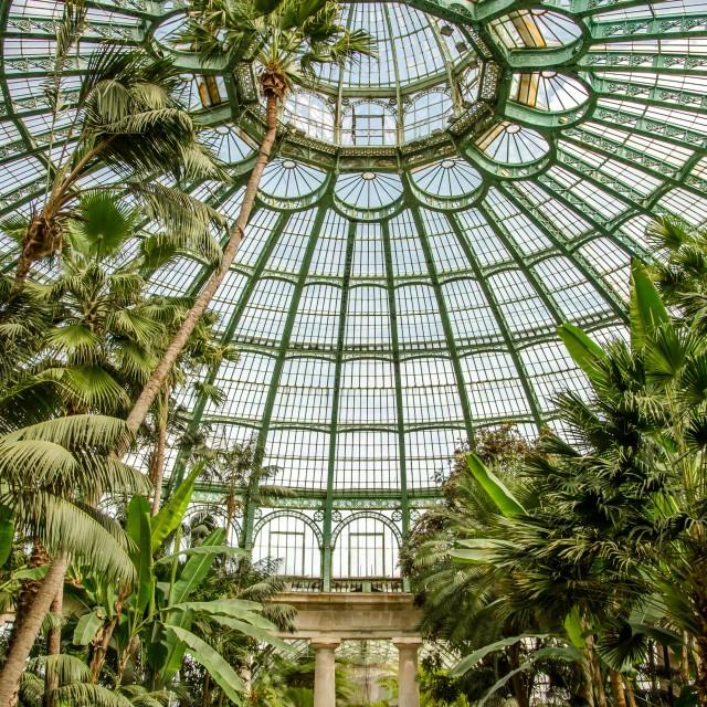 """""""Royal Greenhouses of Laeken 3"""" stock image"""
