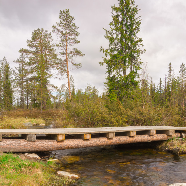 """Log bridge over stream"" stock image"