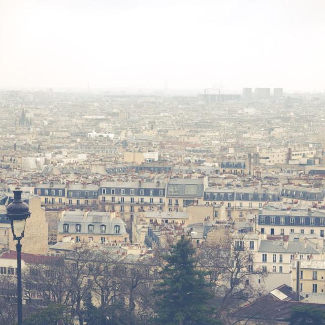 """View of Paris"" stock image"