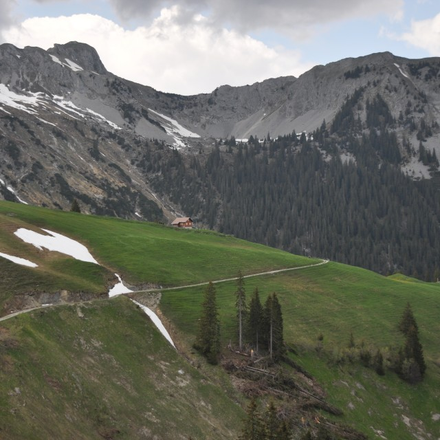 """Walk the Swiss Alps"" stock image"