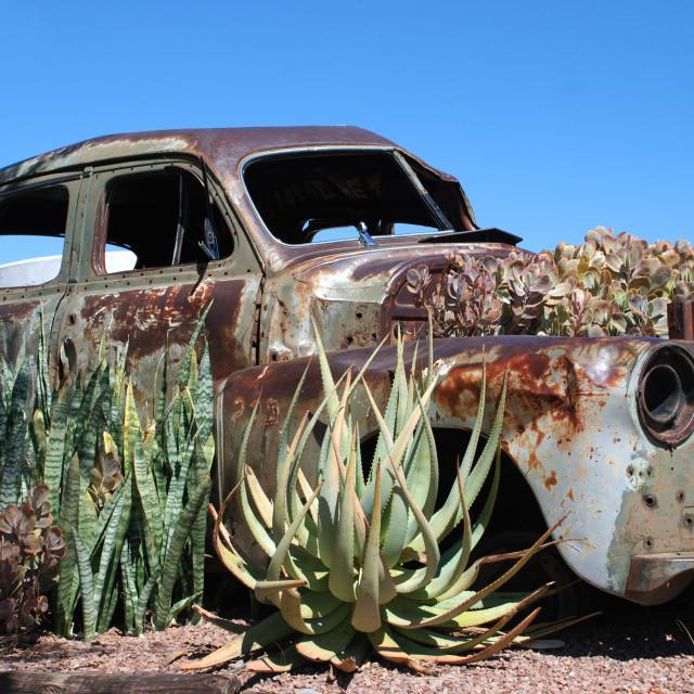 """Rusted Car Garden"" stock image"