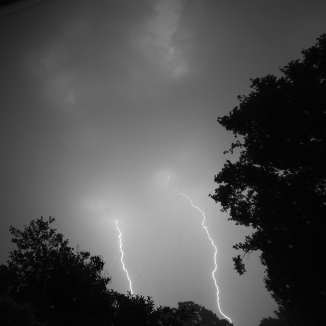 """Double Fork Lightning"" stock image"