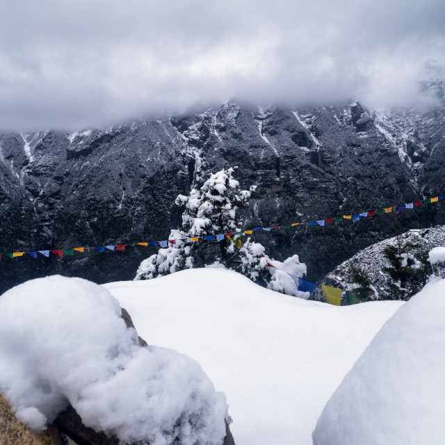 """Prayer Flags & Snow Covered Himalayan Mountains"" stock image"