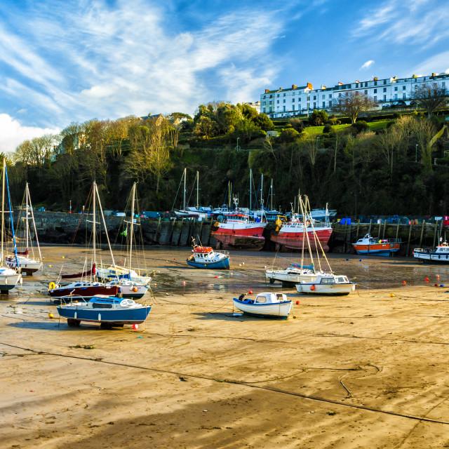 """Ilfracombe Marina at low tide."" stock image"