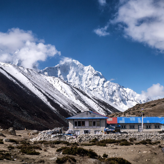 """Teahouse in the Himalayan Mountains (Dingboche)"" stock image"