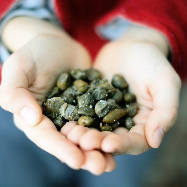 """""""Capers from Pantelleria"""" stock image"""