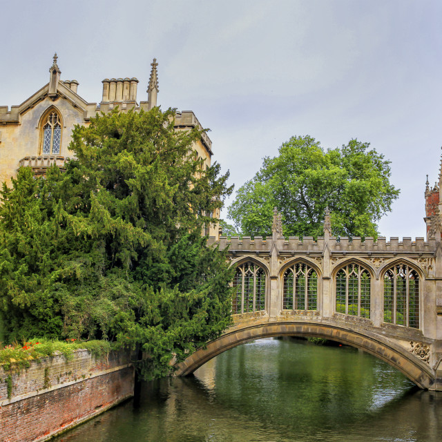 """St Johns college and the Bridge of sighs, Cambridge university"" stock image"