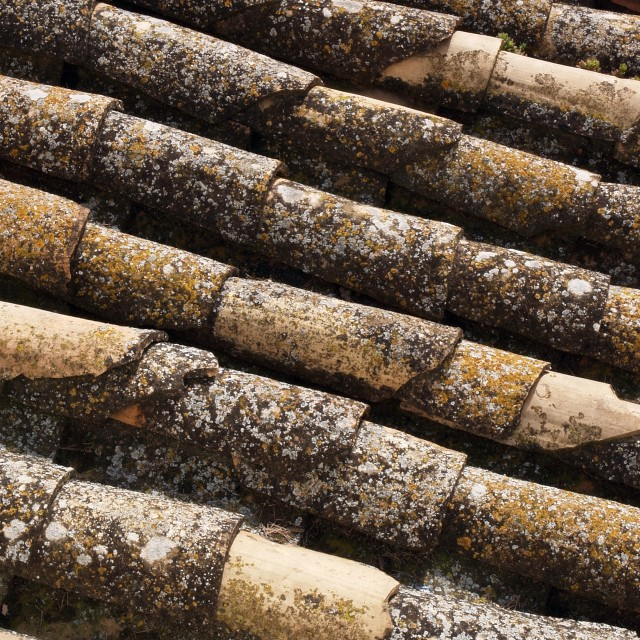 """""""Old Roof"""" stock image"""